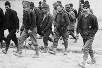 En grupp män i Belgrad 1914 på väg att anmäla sig som frivilliga på väg.