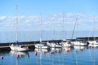Tio av ungefär 30 svenska båttillverkare har fått frågan om framtida nyanställningar – nio av dessa tio planerar att anställa fler framöver.