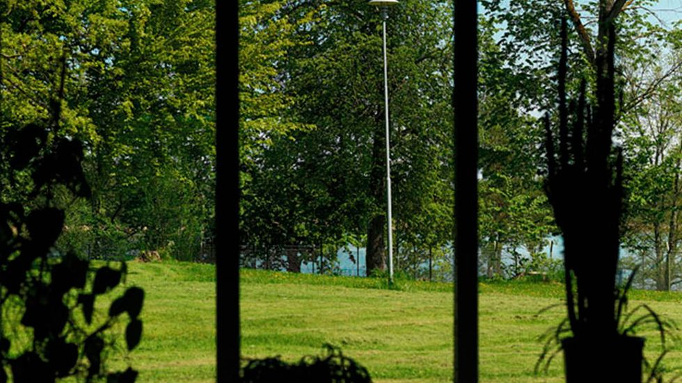 "Detalj ur Anneè Olofsson, ""In between the Bird-sherry and the Lilac, Frövi view #1"", 2014."