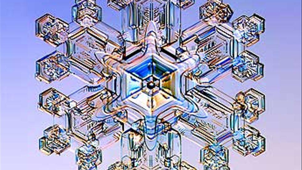 Bilderna på snöflingor har fotograferats på fyra platser. De fyra platserna är Fairbanks i Alaska, Cochrane i Ontario, Burlington i Vermont samt svenska Kiruna. Med snöflingebilderna har fotografen Kenneth Libbrecht vunnit årets Lennart Nilsson-pris. Just denna snöflinga föll i Burlington, Vermont.