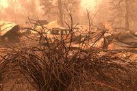 Bränderna har orsakat omfattande skador i bland annat Mill City i Oregon. Tiotals personer saknas fortfarande efter bränderna.