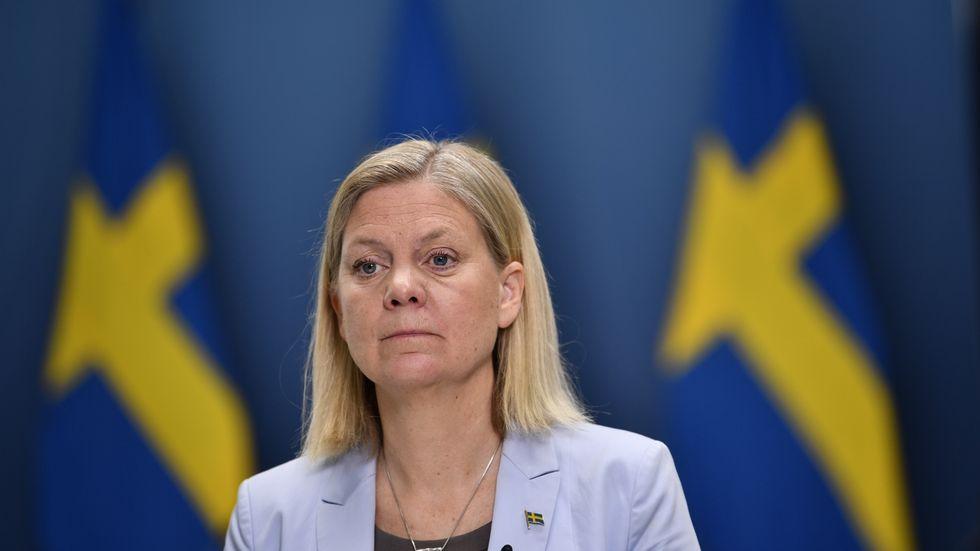Magdalena Andersson (S) vill föra register över medborgarnas tillgångar.