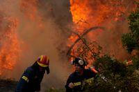 Brandmän kämpar mot lågorna vid byn Ellinika på ön Evia nordost om Aten.