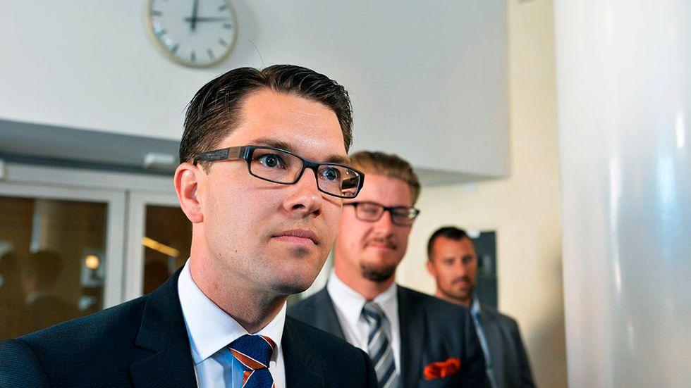 Sverigedemokraterna  Ledamöter: 49 (+29) Medelinkomst: 521 000 kr Medelålder: 39 år Andel kvinnor: 22 procent  SD har Riksdagens yngsta ledamot:  Dennis Dioukarev, 21 år