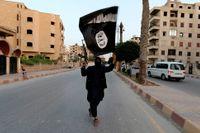 En Isis-medlem viftar med organisationens flagga i Raqqa i Syrien.
