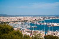 Mallorca har blivit trendigt igen och lockar till sig människor som är ute efter god mat, sol och bad, äventyr och träning.