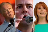Göran Persson (S), Fredrik Reinfeldt (M) och Annie Lööf (C) är några politikerna som fällt mer eller mindre bevingade ord under Almedalsveckan de senaste åren.