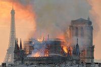 Den våldsamma branden i Notre-Dame i måndags nådde aldrig tre bikupor med uppskattningsvis 180000 invånare.