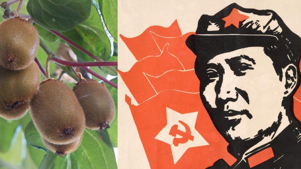 """""""Kinesiskt krusbär"""" lät för kommunistiskt."""