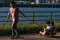 En man drar sina barn på en skateboard i en park i Seoul, Sydkorea.