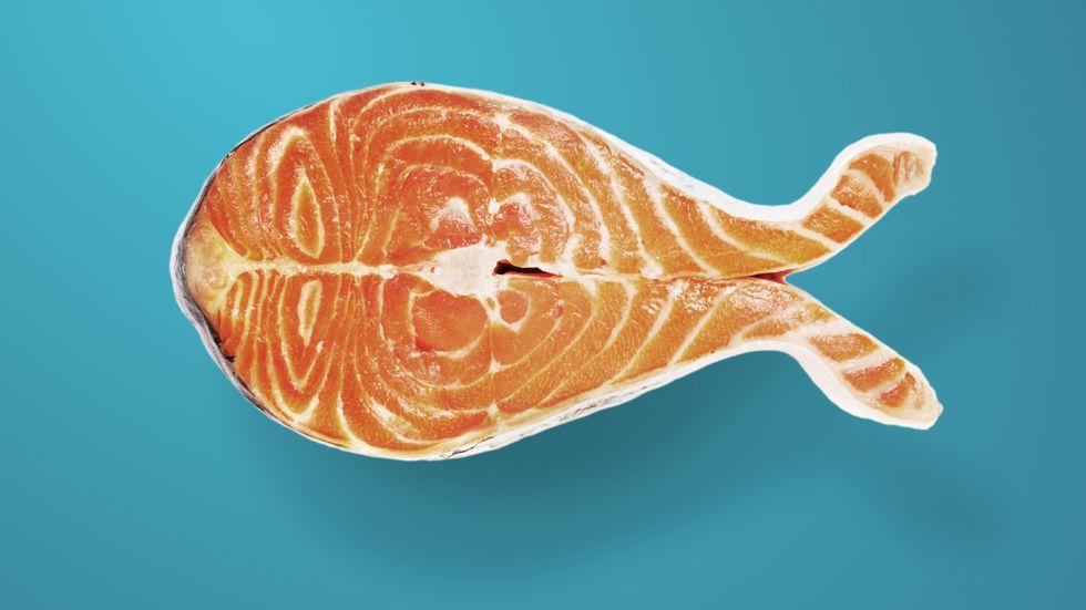 Lax – bidrar till hjärnan. Illustration: Thomas Molén