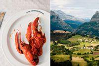 Böljande baskiskt landskap. Avstånden är små och med hyrbil kan man göra många delikata stopp.