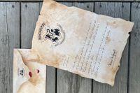 11-åriga Titus har fått ett mystiskt brev från Hogwarts. Vem kan det vara ifrån? Foto: Anne Skoogh