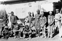 De som tillfångatogs under herero-upproret i Tyska Sydvästafrika 1904 sattes i koncentrationsläger.
