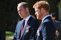 Prinsarna William och Harry medverkar i en dokumentär inför 20-årsdagen av deras mors död.