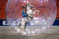 Vid Stockholm International Horse Show 2006 förevisades ryttare och hästar som red fram i en bubbla.