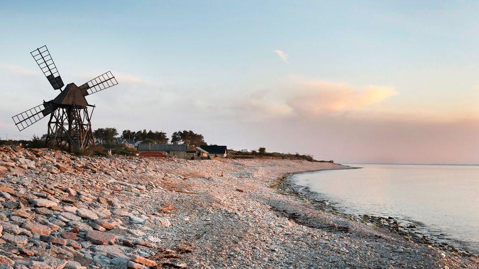 Gamla väderkvarnar syns överallt på Öland.