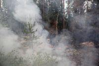 Pyrande rök vid skogsbrand nära Ängra i Ljusdals kommun.