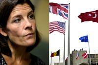 Försvarsminister Karin Engström kritiseras för att låta Sverige bli en del av Nato utan att frågan hanteras demokratiskt.