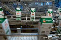 Arla Foods redovisar en svag vinstökning för 2019. Arkivbild.
