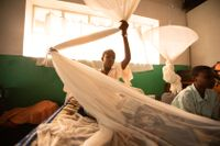 A teenage girl at a boarding school in Karongi district in Rwanda with her mosquito net. The country reported 430,000 fewer cases of malaria in 2017 compared to 2016 (World Malaria Report 2018). Photo: Vincent Becker/The Global Fund