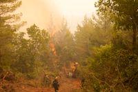 Brandbekämpningen pågår med full styrka på ön Evia (Euboia).
