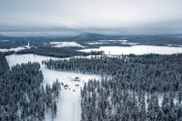 Boliden prospekterar marken i det gamla gruvområdet Laver i Älvsbyn där företaget vill bryta koppar.