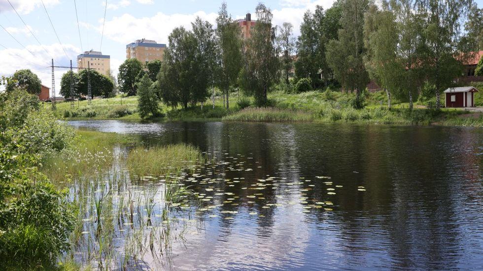 Föräldrarna till pojken som hittades död i en å i Hagfors ville inte att han skulle placeras i HVB-hemmet, som han sedan gav sig ifrån den ödesdigra dagen.