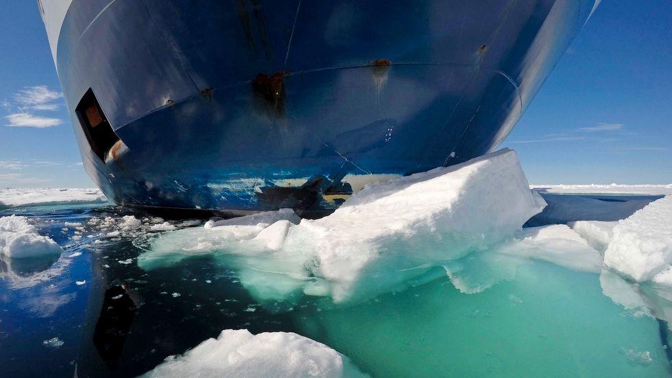 Effekterna från Arktis snabba issmältning genererar intresse från både etablerade och nya aktörer.