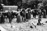 Frivilliga brittiska sjuksköterskor i Frankrike ser till sina hästar. Bilden är förmodligen från omkring 1914–1915.