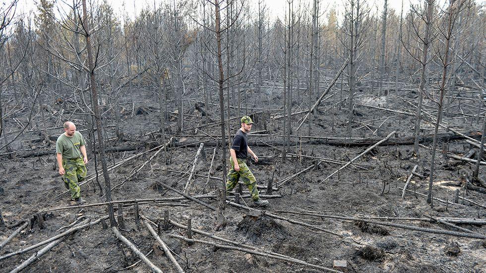 Personal från hemvärnet studerar förödelsen där skogsbranden dragit fram vid Seglingsberg i Västmanland.