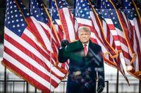 Donald Trump talar för sina supportrar i Washington.