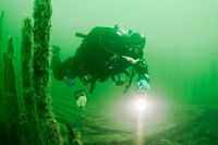 Det mytomspunna 1600-talsskeppet Resande man tros ha hittats av dykare i Östersjön.