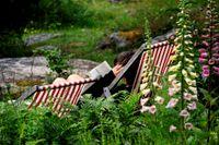 Sommarvärmen kommer tillbaka till Sverige under nästa vecka. Arkivbild.