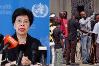 WHO och deras generaldirektör, Margaret Chan, har nu en rad kniviga etiska frågor att ge vägledning till iochmed de nya experimentella medicinerna mot ebola.