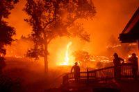 Brandmän bekämpar branden LNU Lightning Complex norr om San Francisco.