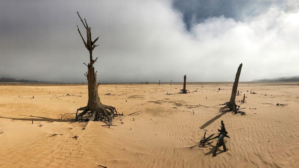 Torkan hotar att leda till vattenbrist i Kapstaden. Bilden, från Theewaterskloof-dammen utanför staden, är från ett tidigare tillfälle.