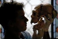 Forskare med skalle från neandertalare, här ett kranium hittat i Spanien som tros vara 400000 år gammalt.