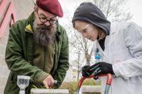 Forskaren Anders visar ett jordprov som han hällt vatten över för att myggäggen ska kläckas.