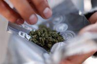 Ett enigt socialutskott vill att regeringen utreder svensk narkotikapolitik. SvD guidar till turerna.