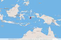Ett skalv har inträffat vid ögruppen Moluckerna i östra Indonesien.