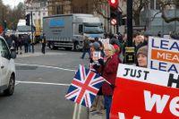 Angie Stone, 71, tillhör de demonstranter i London som vill lämna EU.