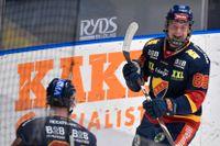 Alexander Holtz är en av de unga spelarna i Djurgårdens satsning. Här jublar han efter en kvittering i en match mot Djurgården och Oskarshamn i vintras.