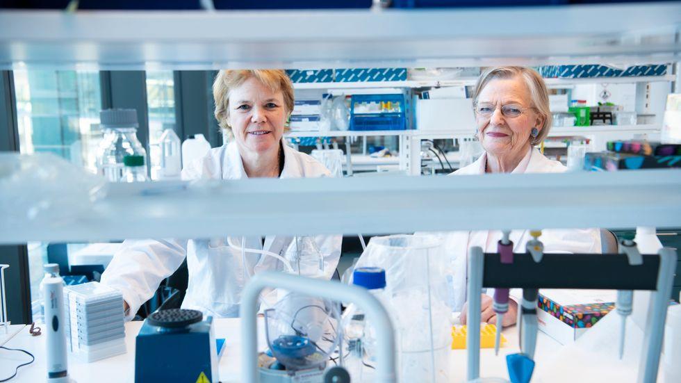 Två av Sveriges främsta diabetesforskare: Harriet Wallberg och Kerstin Brismar.