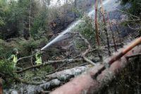 Länsstyrelsen i Jämtland har fått i uppdrag från regeringen att samordna och betala ut ersättning till kommuner som drabbades av skogsbränder i somras. Arkivbild.