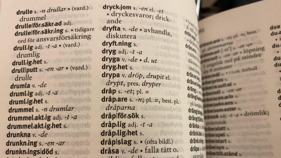 """Kanske bör """"dryg"""" förses med en stilruta i ordboken, vilket visar att det finns något att se upp med."""