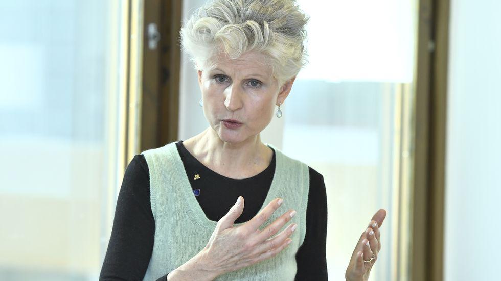 Anna Maria Corazza Bildt (M), ansvarig förhandlare för Europaparlamentets största grupp EPP, anser att det har varit för lite fakta och för mycket rykten kring EU:s förslag till nya vapenregler.