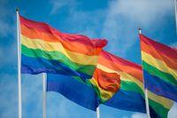 Botswanas högsta domstol har beslutat att homosexualitet ska avkriminaliseras i landet. Arkivbild.