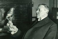 Hjalmar Söderberg fotograferad i samband med sin 60-årsdag, 1929, i hemmet i Köpenhamn.