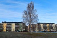 Ronna i Södertälje byggdes som en del av miljonprogrammet.